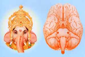 ganesh_in_the_brain